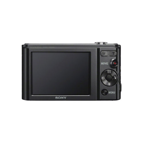 Sony DSC-W800 20.1 MP Compact Camera with 5x Optical Zoom